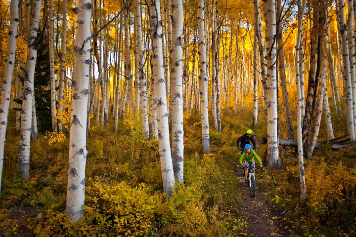 Biking in fall