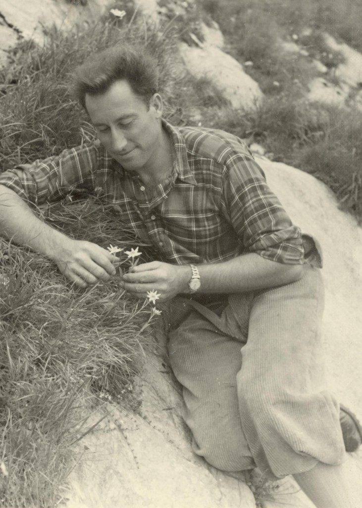 Klaus Obermeyer, edelweiss flowers