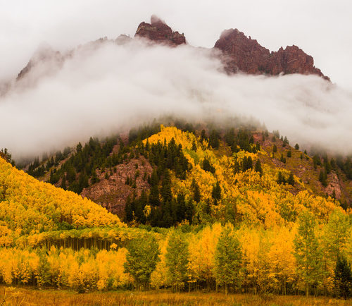 How to Take Gorgeous Photos of Colorado's Aspen Trees